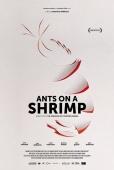 Cartel de Ants on a Shrimp