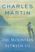 Cartel de The Mountain Between Us