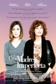 Cartel de Una madre imperfecta (The Meddler)