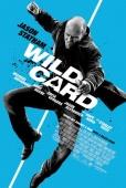 Cartel de Jugada salvaje (Wild Card)
