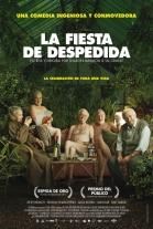 VER y Descargar La fiesta de despedida (2014) Online Latino Mega