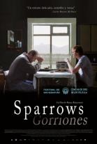 Sparrows (Gorriones)