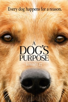 Ver A Dog's Purpose (2017) Online Latino