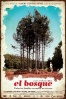 Cartel de El Bosque