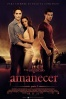 Cartel de La saga Crep�sculo: Amanecer - Parte 1 (The Twilight Saga: Breaking Dawn - Part 1)