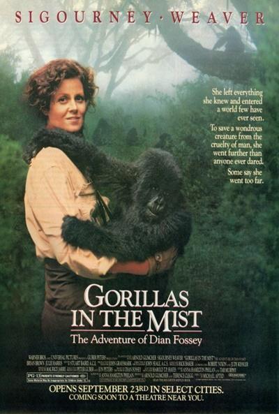 carteles de la pel 237 cula gorilas en la niebla el s 233 ptimo arte