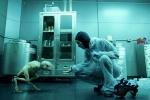 Foto de Splice: Experimento mortal (Splice)