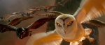 Foto de Ga'Hoole: La leyenda de los guardianes (Legend of the Guardians: The owls of Ga'Hoole)