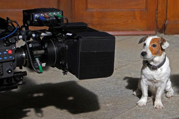 Este es nuestro cine: Pelicula de Pancho,el perro de la loteria 26691