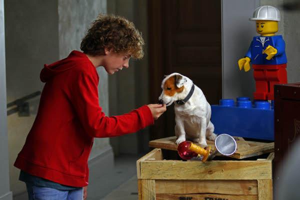 Este es nuestro cine: Pelicula de Pancho,el perro de la loteria 26698