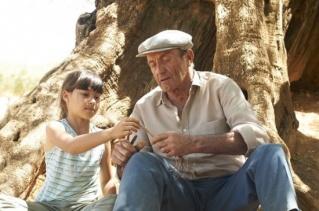 Im�genes de El olivo (El olivo)