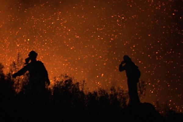 Imagen de La vida en llamas (La vida en llamas)