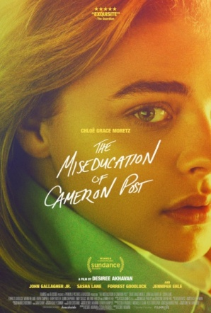 Imagen de The Miseducation of Cameron Post
